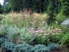 sedum, juniper, echinacea, russian sage, grass