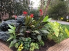 tropical-bed-end-of-september